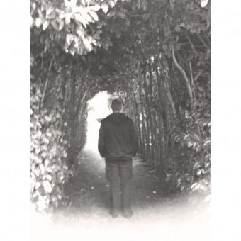 d. p. watt. standing under a bower of trees in the sunlight